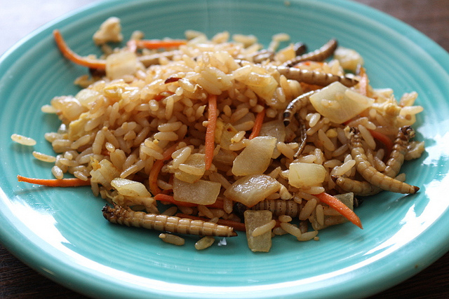Mealworm Fried Rice